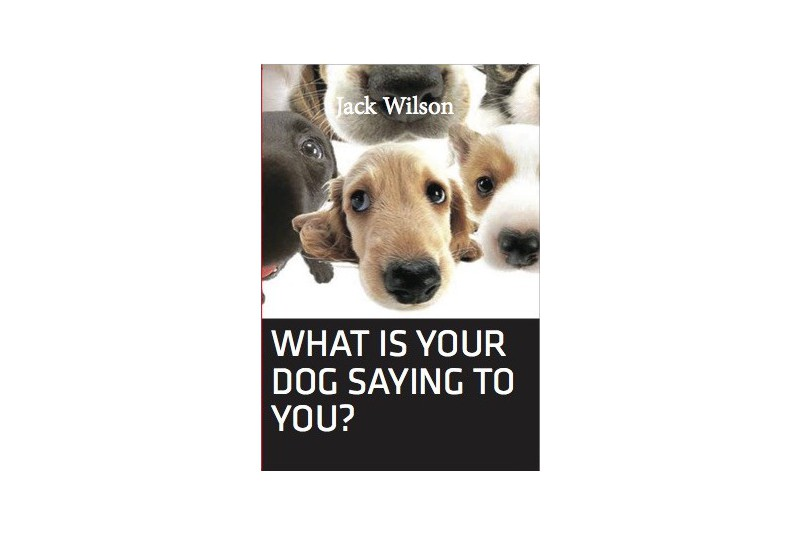 What is your dog saying to you?